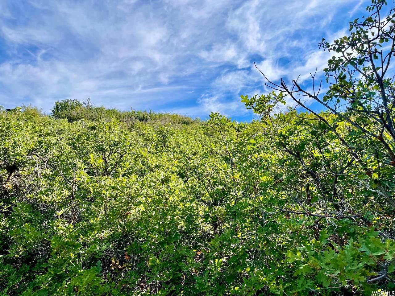 8662 Lake Pines Dr - Photo 1