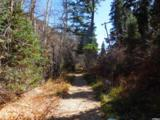 1956 Pinecrest Canyon Rd - Photo 1