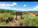 8195 Ranch Garden Rd - Photo 1
