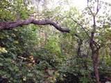 78 Oak Wood Dr - Photo 7