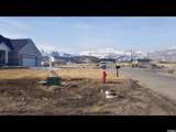 7403 Hi Country Rd - Photo 1
