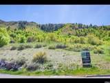 3738 Catamount Ridge Way - Photo 1