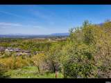 3738 Catamount Ridge Way - Photo 10