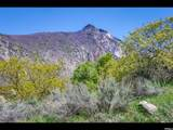 3738 Catamount Ridge Way - Photo 14