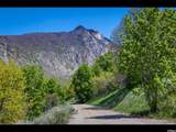3738 Catamount Ridge Way - Photo 2