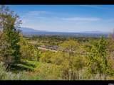 3738 Catamount Ridge Way - Photo 5