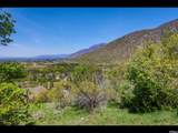 3738 Catamount Ridge Way - Photo 6