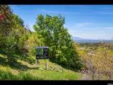3738 Catamount Ridge Way - Photo 7