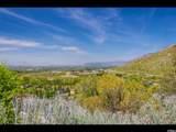 3738 Catamount Ridge Way - Photo 8