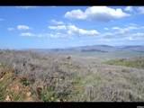 400 Porcupine Loop - Photo 1