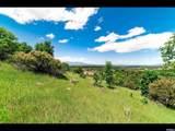 3776 Catamount Ridge - Photo 1