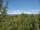 10023 Basin Canyon Rd - Photo 20