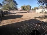 4575 Mule Train Dr - Photo 6
