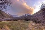 238 Hobble Creek Canyon Rd - Photo 5