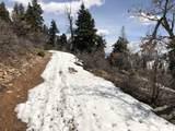 14020 Aspen Ridge Cir - Photo 17