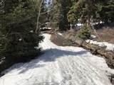 14020 Aspen Ridge Cir - Photo 18