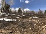 14020 Aspen Ridge Cir - Photo 19