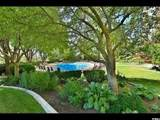 875 Donner Way - Photo 47