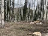 12439 Wilderness Rd - Photo 1