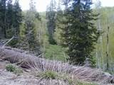 1743 Pine Loop Rd - Photo 1