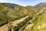 533 Left Fork Hobble Creek Cyn - Photo 46