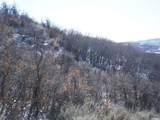 12067 Sage Hollow Cir - Photo 4