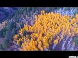 5793 Powder Mountain Rd - Photo 1