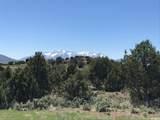 295 Ibapah Peak Dr - Photo 1
