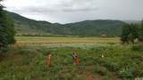 523 Targhee Dr - Photo 1