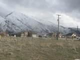 145 Burraston Rd - Photo 1
