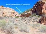 Address Not Published - Photo 44