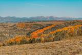 8071 Aspen Ridge Rd - Photo 1