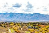 8363 Ranch Garden Rd - Photo 1
