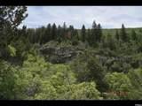 13875 Birch Creek Dr  D-59 Dr - Photo 2