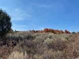 3487 Saddle Circle - Photo 4