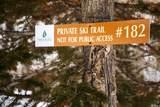 182 White Pine Canyon Rd - Photo 63