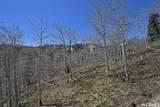1091 Beaver Cir - Photo 39