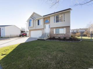 1163 W 1900 N, Lehi, UT 84043 (#1436481) :: Red Sign Team