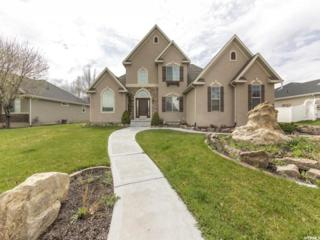 1349 S Lakeview Ter, Saratoga Springs, UT 84045 (#1440961) :: Red Sign Team