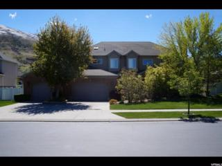 13247 S Akagi Ln E, Draper, UT 84020 (#1446980) :: Red Sign Team