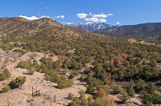 525 E Pack Creek Rd #8, Moab, UT 84532 (MLS #1657922) :: High Country Properties