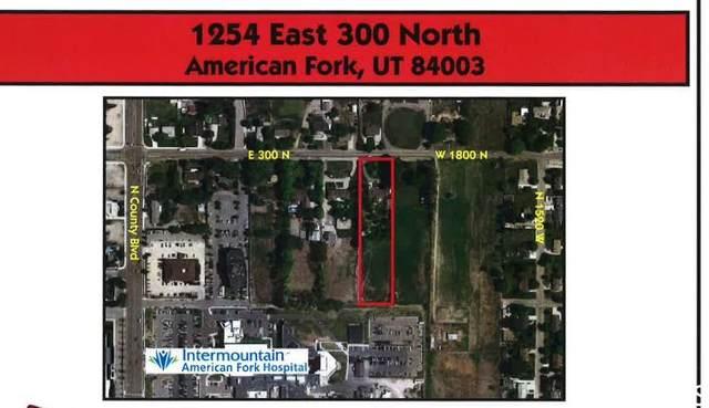 1254 E 300 N, American Fork, UT 84003 (MLS #1707392) :: Summit Sotheby's International Realty