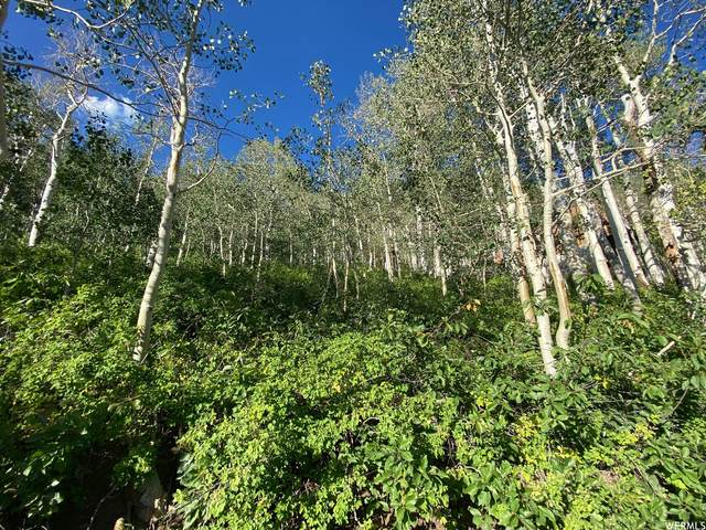 12485 E Skyline View Ln N #17, Salt Lake City, UT 84121 (#1708191) :: Utah Dream Properties