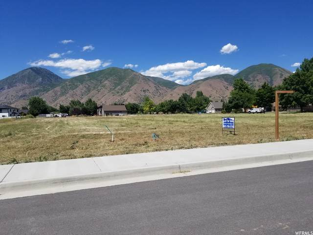 897 N Main St #3, Mapleton, UT 84664 (#1712073) :: C4 Real Estate Team