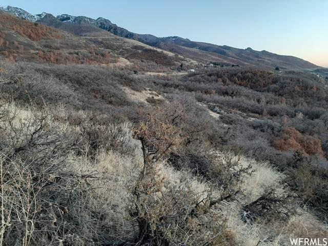 2512 N Valley View Dr, Layton, UT 84040 (#1716645) :: Utah Dream Properties