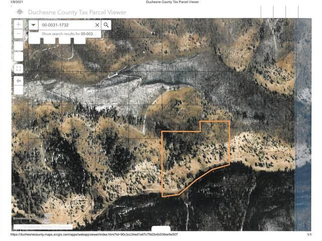 Address Not Published, Duchesne, UT 84021 (MLS #1719157) :: Summit Sotheby's International Realty
