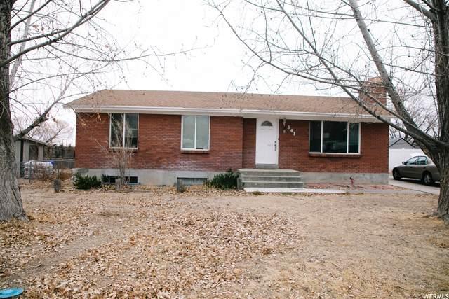 341 Severe St, Grantsville, UT 84029 (#1719657) :: Colemere Realty Associates