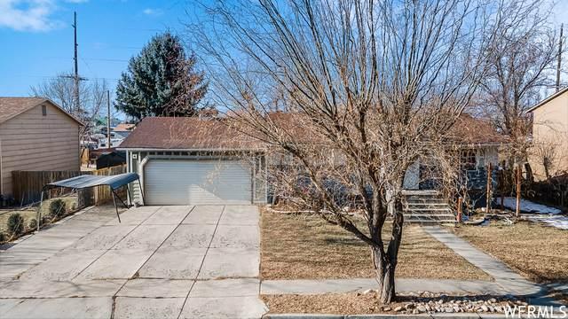 944 S 1000 E, Springville, UT 84663 (#1719661) :: Utah Best Real Estate Team | Century 21 Everest