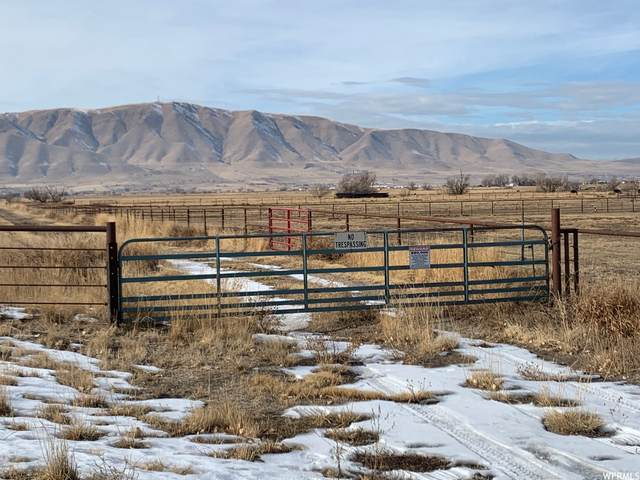 Address Not Published, Benjamin, UT 84660 (MLS #1720249) :: Summit Sotheby's International Realty