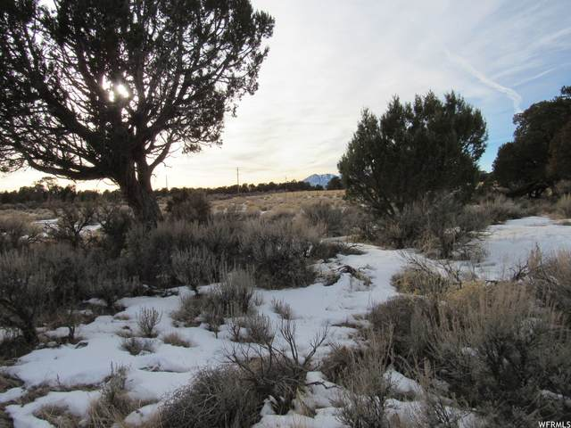 Address Not Published, Monticello, UT 84535 (MLS #1720268) :: Lookout Real Estate Group